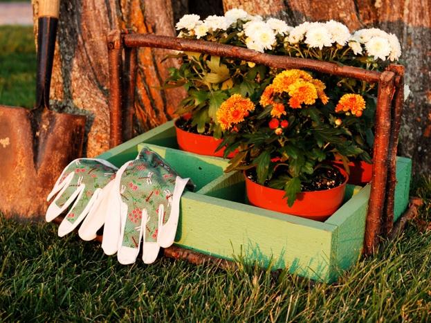 Fall gardening.jpg